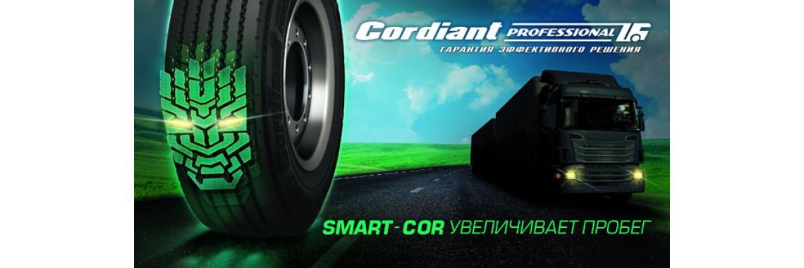 Кордиант2